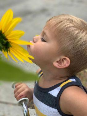 A boy and a sunflower